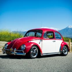 1967_VW_BUG